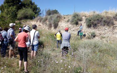 Ruta de sòls i paisatges al terme municipal de Lleida