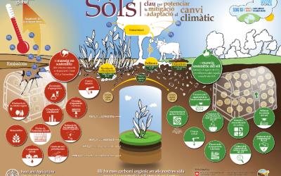 Materials de divulgació de la FAO sobre els sòls, en català