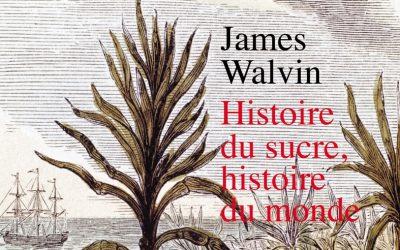 Història del sucre, història del món